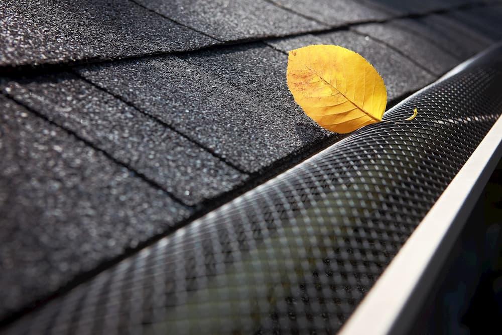 Laubschutz einer Regenrinne © stock.adobe.com
