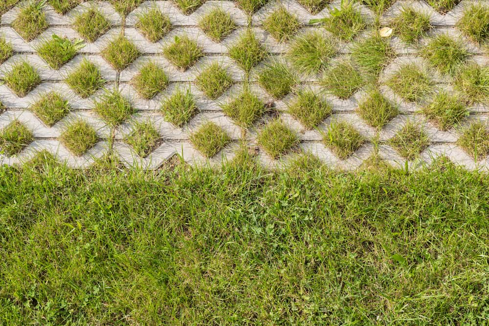 Rasensteine © alho007, stock.adobe.com